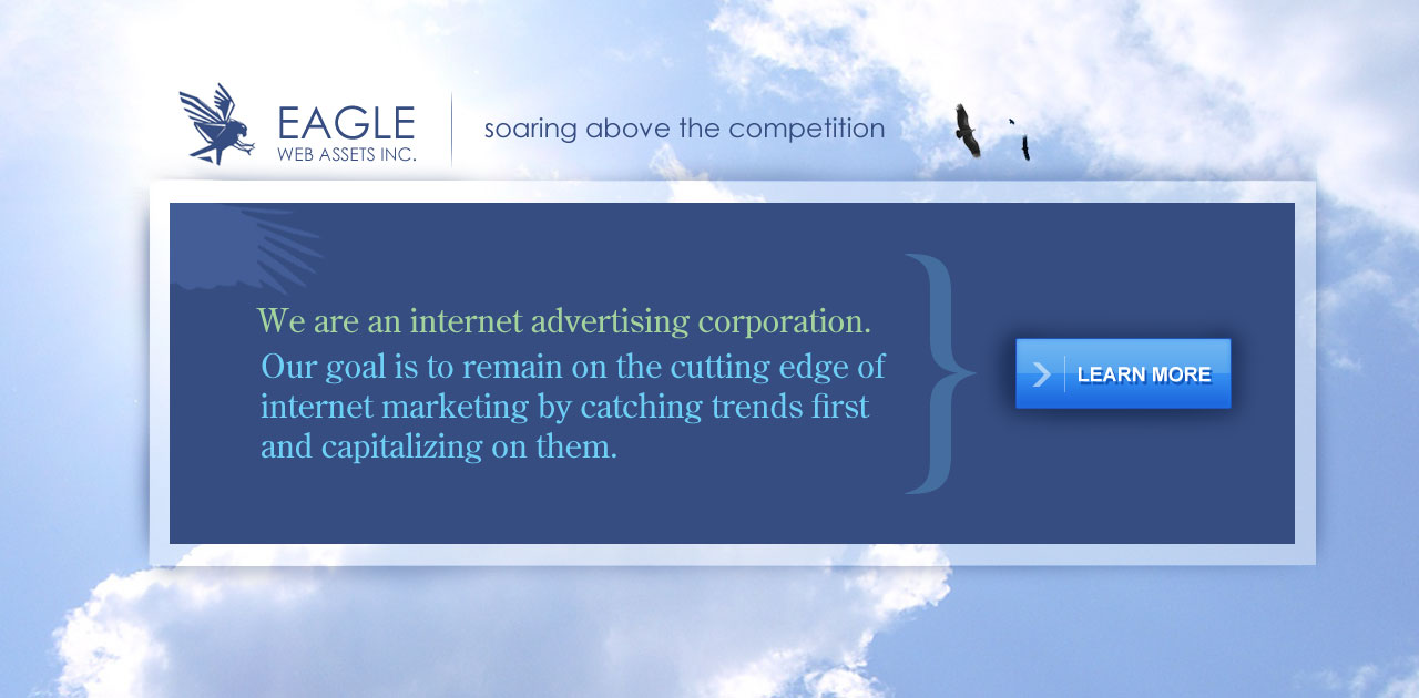 internet advertising company: