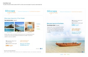 Blisscape.com Special-Offer-EmailLook